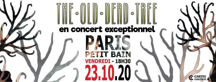 The OLD DEAD TREE en concert @Paris (23.10.2020) - Petit Bain